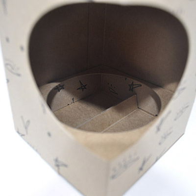 Internal Carton Fitment | Printed Packaging